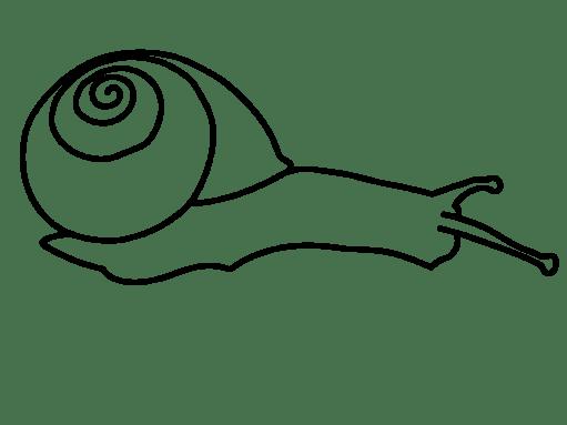 snail-outline